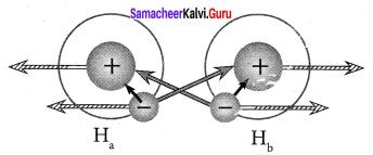 Samacheer Kalvi 11th Chemistry Solutions Chapter 10 Chemical Bonding-170