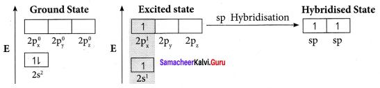 Samacheer Kalvi 11th Chemistry Solutions Chapter 10 Chemical Bonding-173