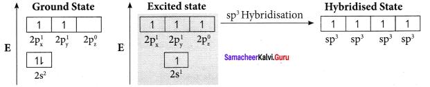 Samacheer Kalvi 11th Chemistry Solutions Chapter 10 Chemical Bonding-175