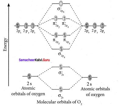 Samacheer Kalvi 11th Chemistry Solutions Chapter 10 Chemical Bonding-18