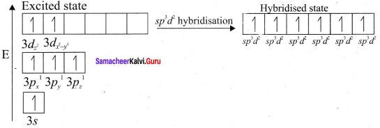 Samacheer Kalvi 11th Chemistry Solutions Chapter 10 Chemical Bonding-181