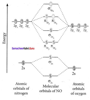 Samacheer Kalvi 11th Chemistry Solutions Chapter 10 Chemical Bonding-184