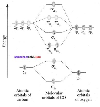 Samacheer Kalvi 11th Chemistry Solutions Chapter 10 Chemical Bonding-21