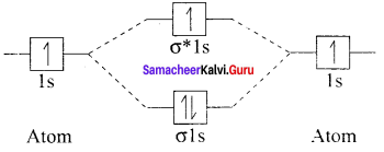 Samacheer Kalvi 11th Chemistry Solutions Chapter 10 Chemical Bonding-33