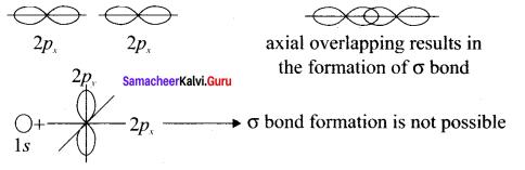 Samacheer Kalvi 11th Chemistry Solutions Chapter 10 Chemical Bonding-34