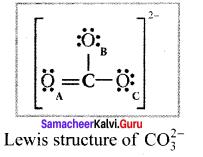 Samacheer Kalvi 11th Chemistry Solutions Chapter 10 Chemical Bonding-35