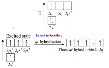 Samacheer Kalvi 11th Chemistry Solutions Chapter 10 Chemical Bonding-38