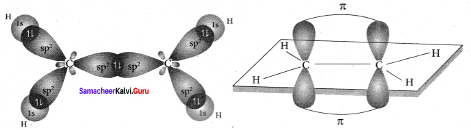Samacheer Kalvi 11th Chemistry Solutions Chapter 10 Chemical Bonding-39