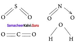 Samacheer Kalvi 11th Chemistry Solutions Chapter 10 Chemical Bonding-5