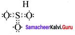 Samacheer Kalvi 11th Chemistry Solutions Chapter 10 Chemical Bonding-55