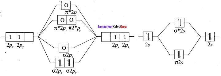 Samacheer Kalvi 11th Chemistry Solutions Chapter 10 Chemical Bonding-65
