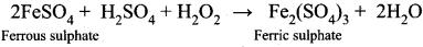 Samacheer Kalvi Guru 11th Chemistry