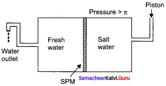 Samacheer Kalvi 11th Chemistry Solutions Chapter 9 Solutions-90