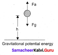 Samacheer Kalvi 11th Physics Solutions Chapter 4 Work, Energy and Power 100