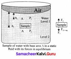 Samacheer Kalvi 11th Physics Solutions Chapter 7 Properties of Matter 555