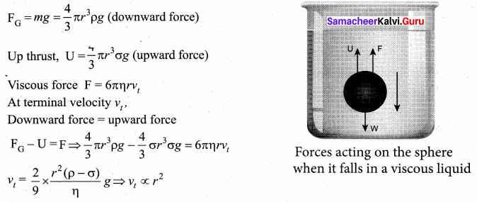 Samacheer Kalvi 11th Physics Solutions Chapter 7 Properties of Matter 66