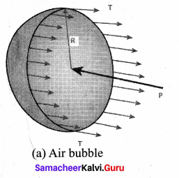 Samacheer Kalvi 11th Physics Solutions Chapter 7 Properties of Matter 71