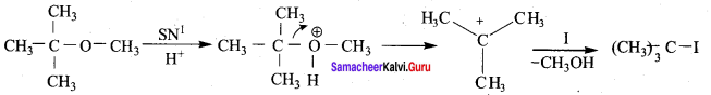 Samacheer Kalvi 12th Chemistry Solutions Chapter 11 Hydroxy Compounds and Ethers-22