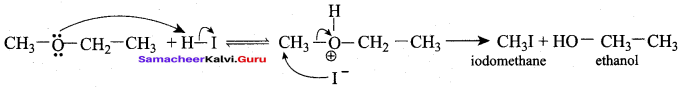 Samacheer Kalvi 12th Chemistry Solutions Chapter 11 Hydroxy Compounds and Ethers-221