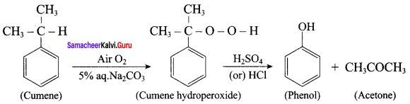 Samacheer Kalvi 12th Chemistry Solutions Chapter 11 Hydroxy Compounds and Ethers-40