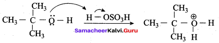 Samacheer Kalvi 12th Chemistry Solutions Chapter 11 Hydroxy Compounds and Ethers-239