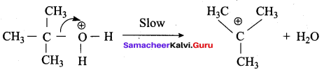 Samacheer Kalvi 12th Chemistry Solutions Chapter 11 Hydroxy Compounds and Ethers-240