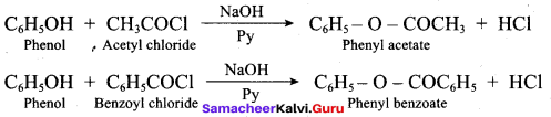 Samacheer Kalvi 12th Chemistry Solutions Chapter 11 Hydroxy Compounds and Ethers-245