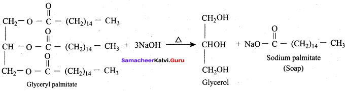Samacheer Kalvi 12th Chemistry Solutions Chapter 11 Hydroxy Compounds and Ethers-156