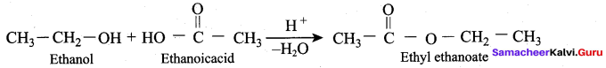 Samacheer Kalvi 12th Chemistry Solutions Chapter 11 Hydroxy Compounds and Ethers-160