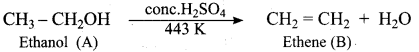 Samacheer Kalvi 12th Chemistry Solutions Chapter 11 Hydroxy Compounds and Ethers-259
