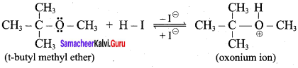 Samacheer Kalvi 12th Chemistry Solutions Chapter 11 Hydroxy Compounds and Ethers-95