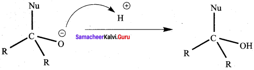 Samacheer Kalvi 12th Chemistry Solutions Chapter 12 Carbonyl Compounds and Carboxylic Acids-216