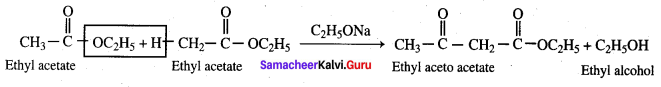 Samacheer Kalvi 12th Chemistry Solutions Chapter 12 Carbonyl Compounds and Carboxylic Acids-249
