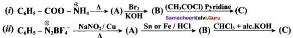 Samacheer Kalvi 12th Chemistry Solutions Chapter 13 Organic Nitrogen Compounds-158