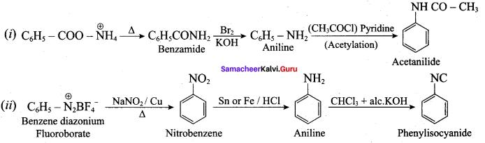 Samacheer Kalvi 12th Chemistry Solutions Chapter 13 Organic Nitrogen Compounds-159