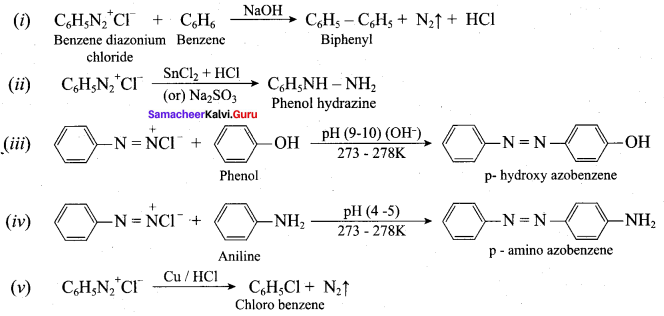 Samacheer Kalvi 12th Chemistry Solutions Chapter 13 Organic Nitrogen Compounds-177