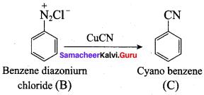 Samacheer Kalvi 12th Chemistry Solutions Chapter 13 Organic Nitrogen Compounds-180