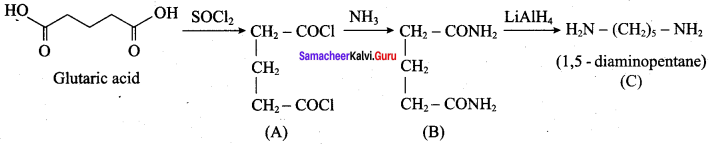Samacheer Kalvi 12th Chemistry Solutions Chapter 13 Organic Nitrogen Compounds-78
