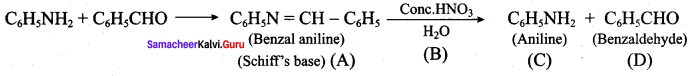 Samacheer Kalvi 12th Chemistry Solutions Chapter 13 Organic Nitrogen Compounds-80