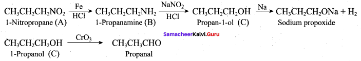 Samacheer Kalvi 12th Chemistry Solutions Chapter 13 Organic Nitrogen Compounds-190