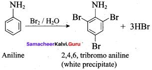 Samacheer Kalvi 12th Chemistry Solutions Chapter 13 Organic Nitrogen Compounds-280