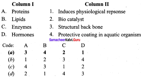 Samacheer Kalvi 12th Chemistry Solutions Chapter 14 Biomolecules-20