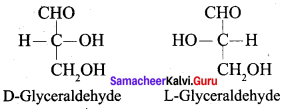 Samacheer Kalvi 12th Chemistry Solutions Chapter 14 Biomolecules-32