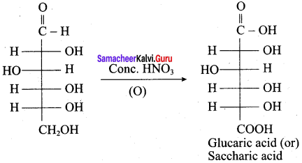 Samacheer Kalvi 12th Chemistry Solutions Chapter 14 Biomolecules-41