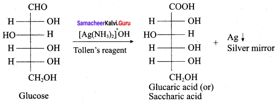 Samacheer Kalvi 12th Chemistry Solutions Chapter 14 Biomolecules-42