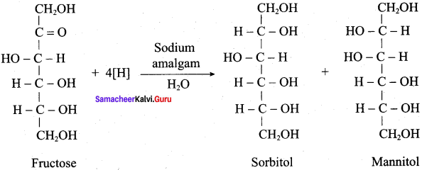 Samacheer Kalvi 12th Chemistry Solutions Chapter 14 Biomolecules-47