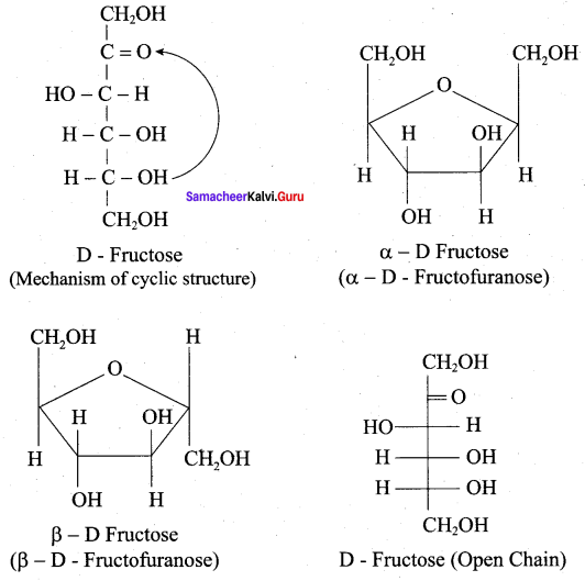 Samacheer Kalvi 12th Chemistry Solutions Chapter 14 Biomolecules-48