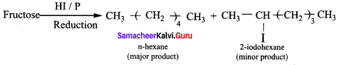 Samacheer Kalvi 12th Chemistry Solutions Chapter 14 Biomolecules-67