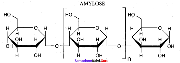 Samacheer Kalvi 12th Chemistry Solutions Chapter 14 Biomolecules-72