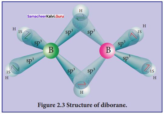 Samacheer Kalvi 12th Chemistry Solutions Chapter 2 p-Block Elements - I img-15